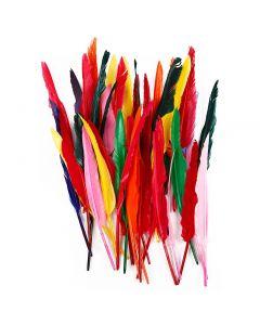 Veren, L: 29-31 cm, diverse kleuren, 100 stuk/ 1 doos