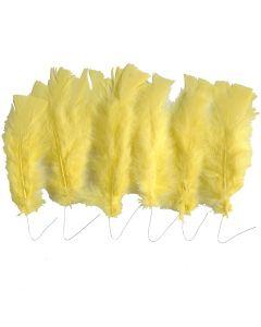 Veren, L: 11-17 cm, geel, 18 bol/ 1 doos