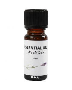 Geurolie, Lavendel, 10 ml, 10 ml/ 1 fles