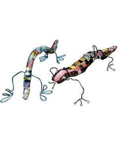 Salamanders … en andere vreemde wezens