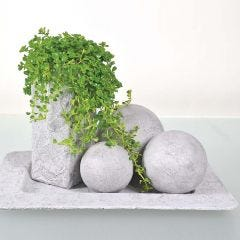 Objecten geverfd met betonpasta