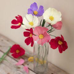 Cosmos (cosmea) bloemen van crêpepapier