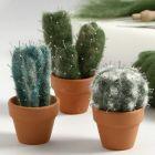 Een genaaldvilte cactus