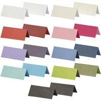 Plaatskaarten, afm 9x4 cm, Inhoud kan variëren , 250 gr, diverse kleuren, 30 doos/ 1 doos