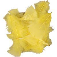 Veren, afm 7-8 cm, geel, 500 gr/ 1 doos