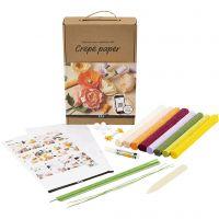 Crepe papier Ontdekken Kit, 105 gr, diverse kleuren, 1 set