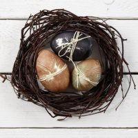 Echte eieren in nature look